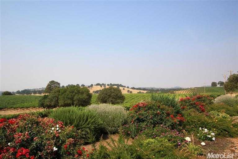 The home is surrounded by 10 acres in mature grape vines leased to an area winery.
