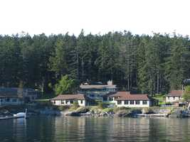 I consider myself to be extremely lucky to have been partly raised at the Friday Harbor Laboratories on beautiful San Juan Island. As a child, I spent endless hours out in nature exploring the beaches and forests.