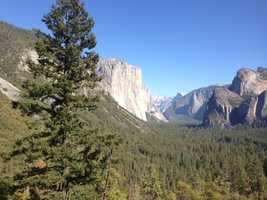 """""""We are thrilled the park is open again and visitors are homing in,"""" Yosemite ranger Scott Gediman said."""