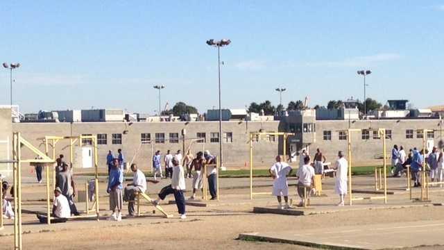 prison dogs at Solano prison.JPG