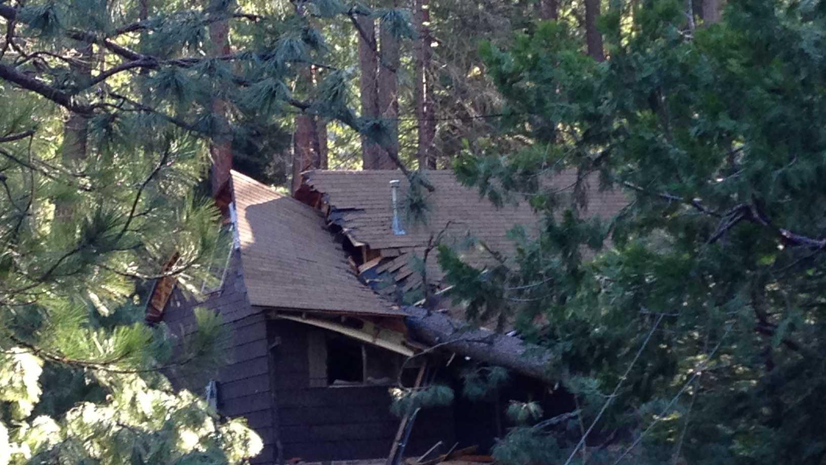 Home damaged by fallen tree in Kyburz. (Nov. 22, 2013)