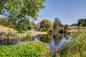 The home has three ponds and a rock garden to explore.