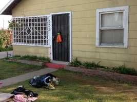 This is where the mother gave birth, in an enclosed porch (Nov. 27, 2013).