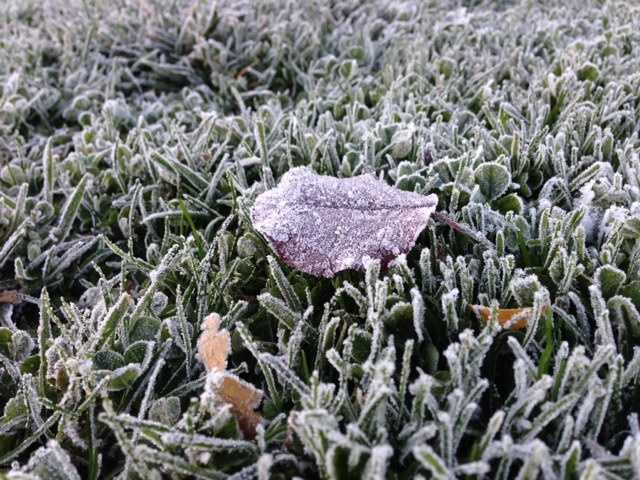 From Modesto to Auburn, record-breaking temperatureshit many parts of the Valley. See the effects of the cold snap in these photos.