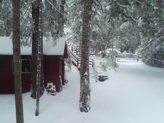 Snowfall in Pioneer, Calif. (Dec. 7, 2013)
