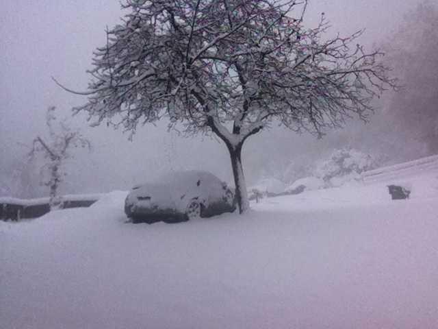 Snow blankets Sonora. (Dec. 7, 2013)