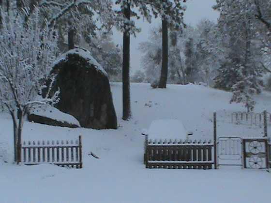 Saturday morning snowfall. (Dec. 7, 2013)