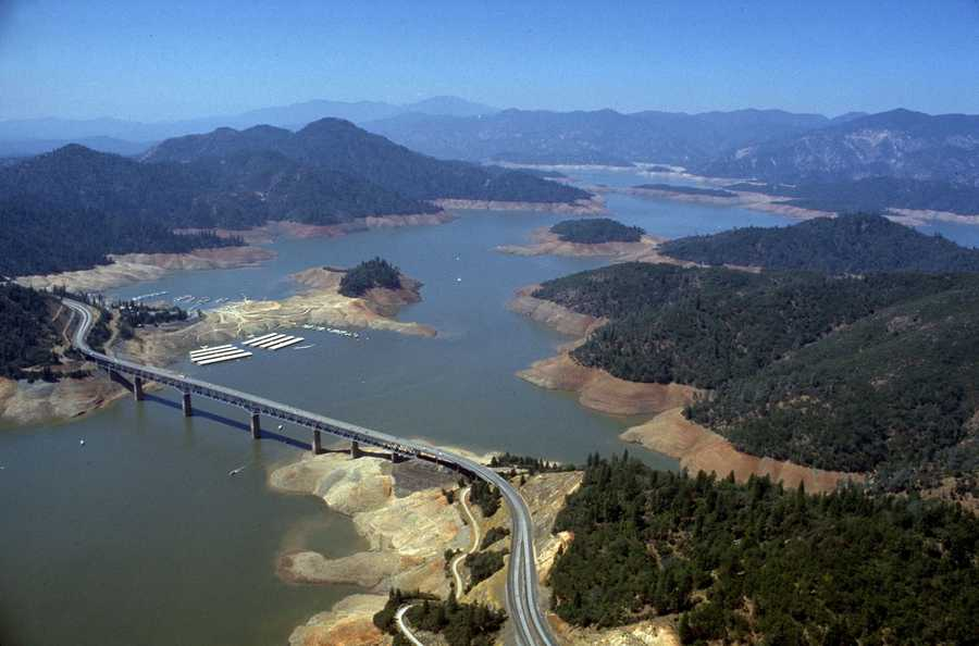 Lake Shasta shrank during the 1976-77 drought. In this aerial view, trees and shrubs outlined the area that water levels normally rose to along the hills.