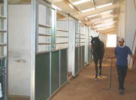 This home fulfills all the needs of horse lover's heart, and includes three barns.