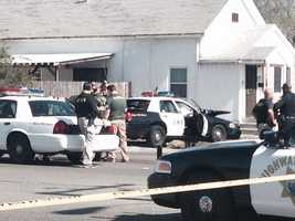 See more photos from the scene: