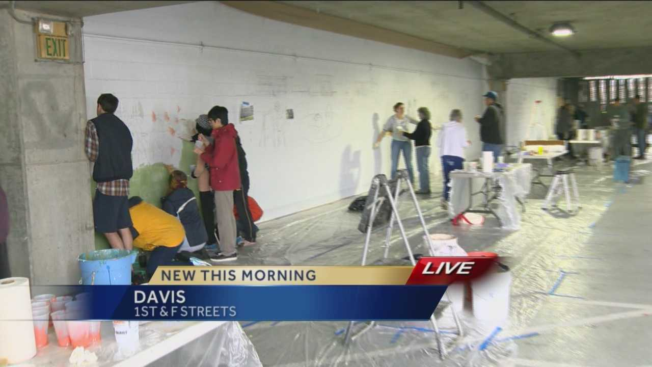 Members from the Davis community worked together to transform a parking garage in downtown Davis into a work of art.
