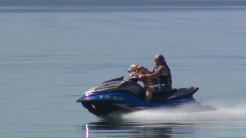 Bob Paris and his dog Maddy ride a Jet Ski on Folsom Lake (March 14, 2014).