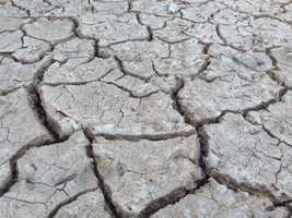 Dry ground in the Central Valley illustrated the concerns of many farmers.