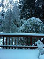 Snow in Pollock Pines