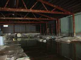 The most recent operator of this wood treatment facility outside Elmira had sealed the entire building in concrete, but several layers of flooring were beneath. The water table had risen to the last layer of concrete, leaching arsenic and chromium into the water you see here.
