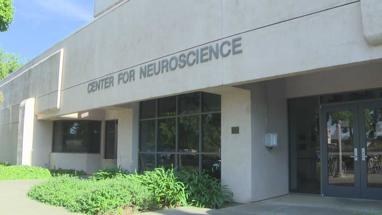 Windows of a neuroscience building were damaged. The graffiti was found Monday.