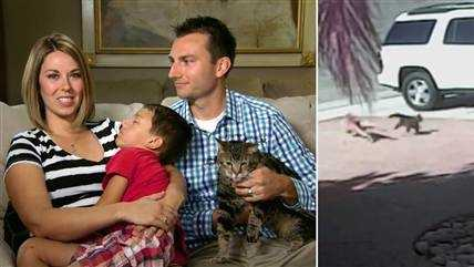 today-cat-rescue-140515-split-02.TdyHorz3.jpg