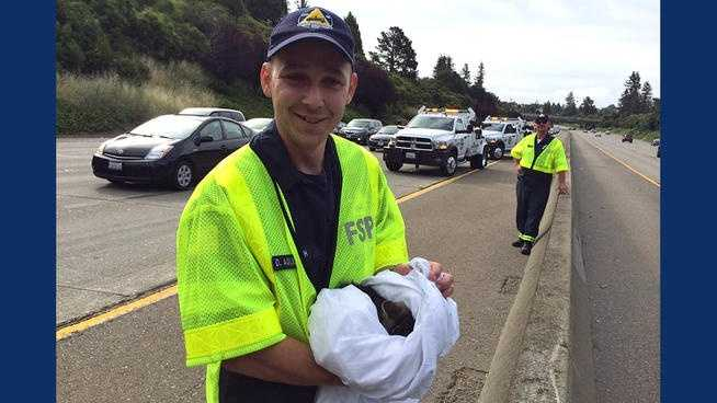 A kitten was rescued from the wheel well of a car on Interstate 580 in Oakland. (May 19, 2014)