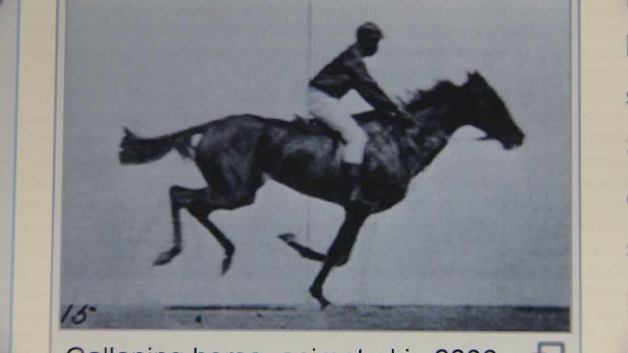 Historian details Sacramento's horse racing past