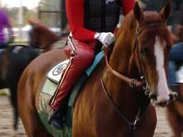 19. The two owners of California Chrome put together $8,000 to buy the colt.