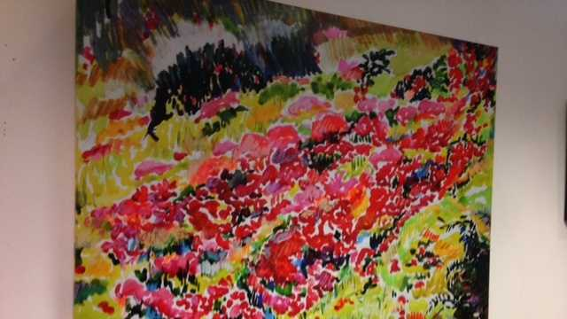 Alawsi's artwork will be on display at Pan's Capitol office, room 6005, through July.