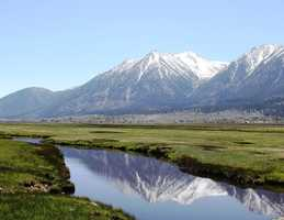 18.) I am a fifth-generation Nevadan, born and raised in Gardnerville. My heritage is traced back to German and Irish farmers who moved to the fertile Carson Valley.