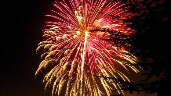 fireworks 070414.jpg
