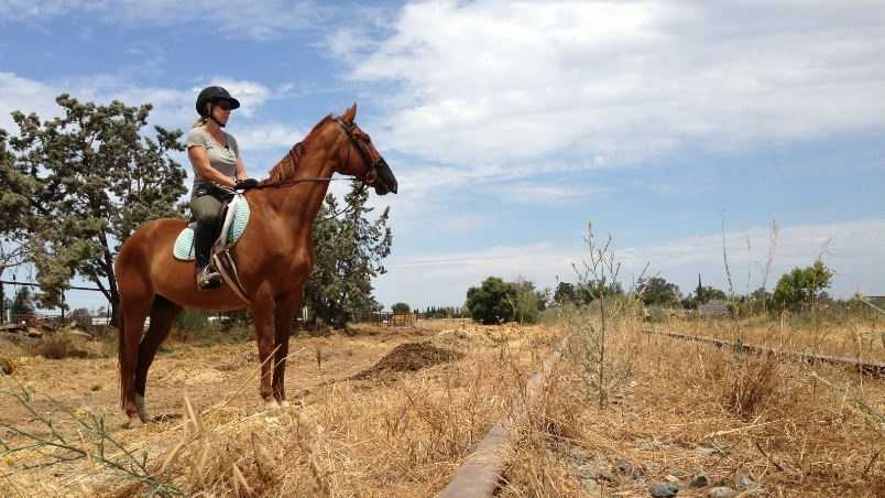 Horse trainer Kristen Gius says she would like to see the abandoned rail line through Wilton converted into a recreational trail.