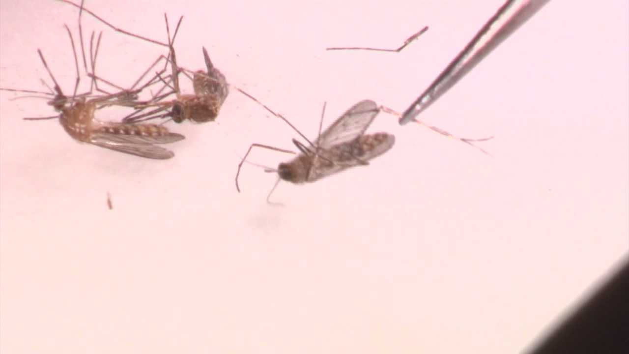People in the North Natomas part of Sacramento are upset over the West Nile virus aerial spraying that happened over the weekend, saying the planes deposited possibly harmful materials covering their homes and their pets without notice.