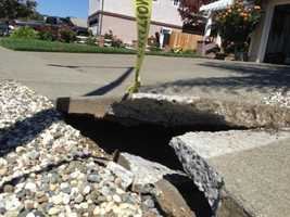 A sidewalk buckled on White Cliff Circle in Napa. (Aug. 24, 2014)