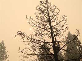The sun is barely visible through the smoke of the King Fire near Ice House Road. (Sept. 19, 2014)