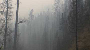 Cooler, wet weather helped firefighters make progress on the King Fire near Pollock Pines over the weekend.