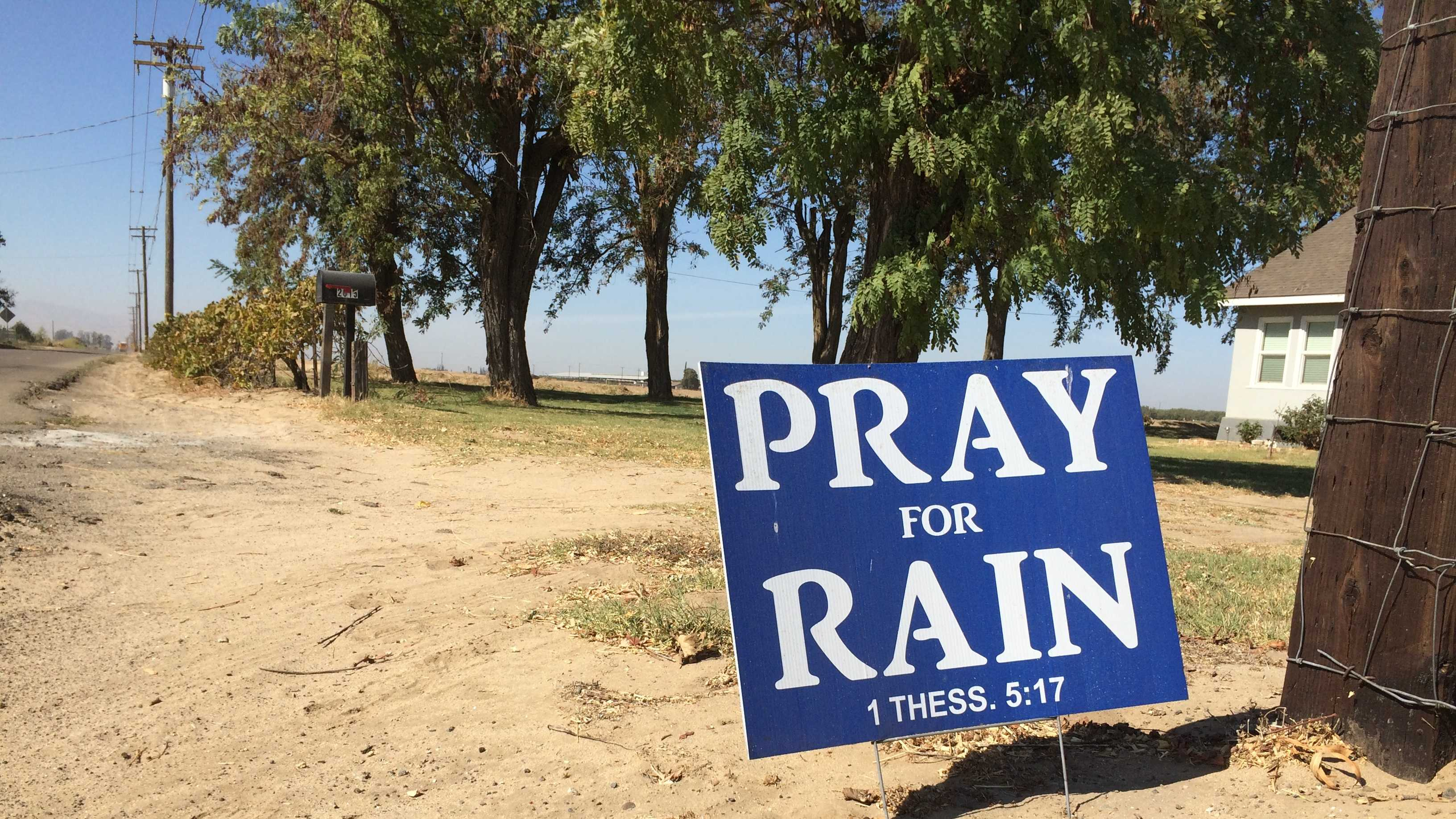"Residents in Turlock have begun posting signs that say, ""pray for rain."" They are neighbors of Cal Water's Curtis Hennings, who has a two-year waiting list to dig new wells for residents. Even with four rigs running at all times, he can't keep up, nor can his fellow drillers, who he no longer looks at as competitors."