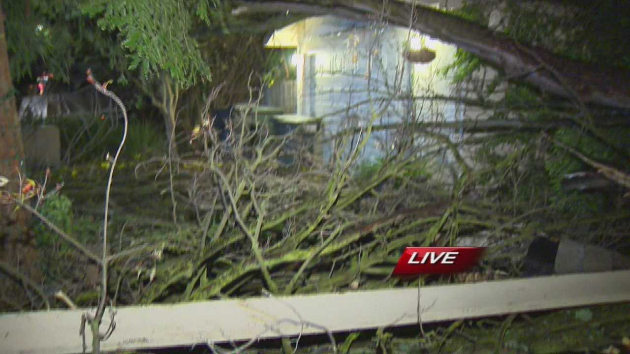 A tree toppled over early Thursday morning onto a home in Sacramento County.