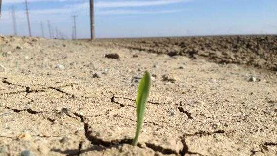 This photo of drought conditions in California's Central Valley.