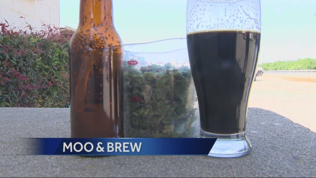 A local dairy in Turlock is looking at adding a microbrewery to their operation.