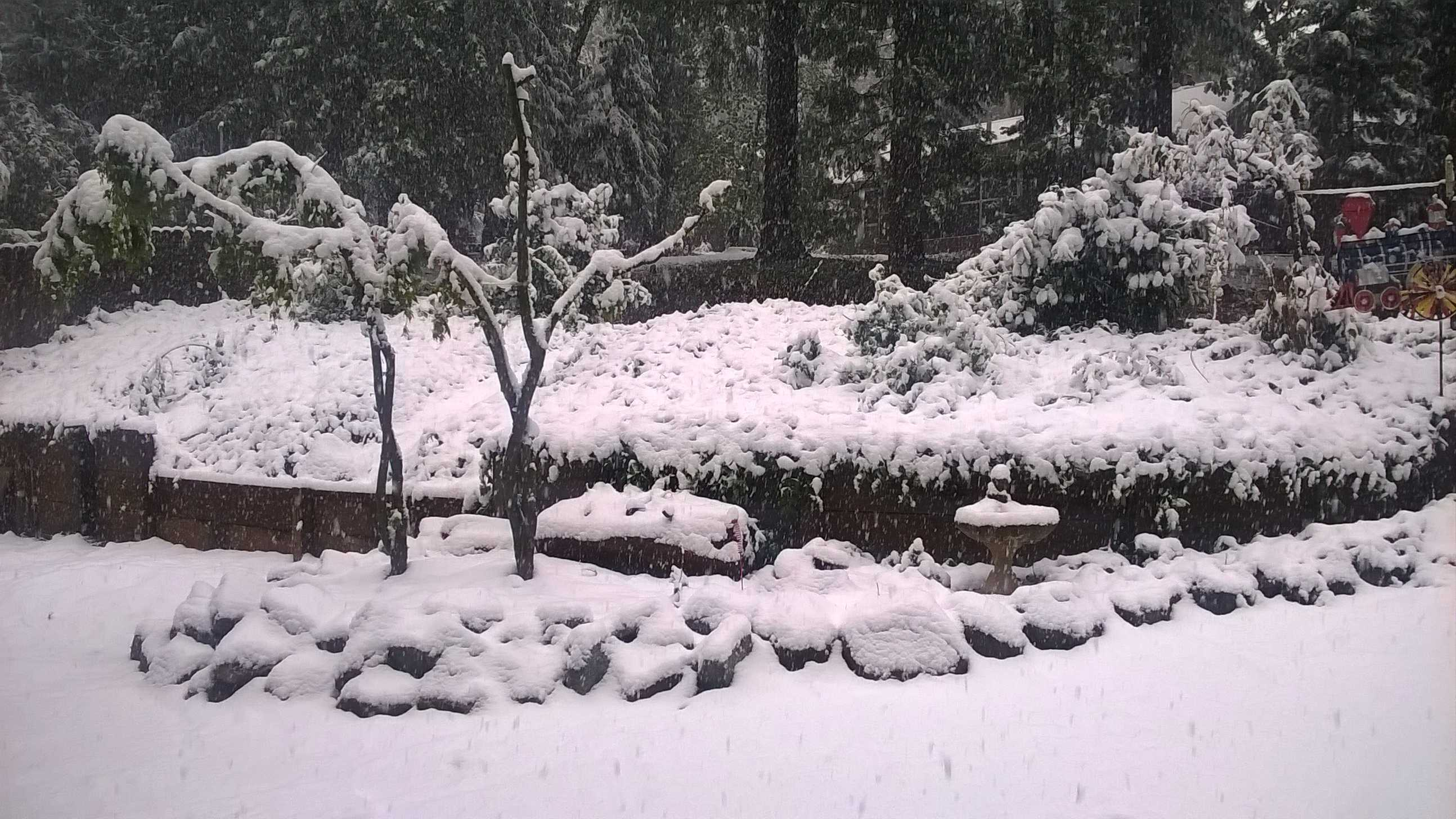 A winter wonderland in Colfax, Calif. (April 7, 2015)