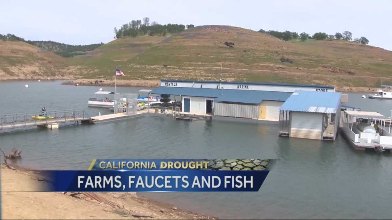 Water districts are hoping to block a scheduled water release for fish. The battleground is at New Melones Lake, near Angels Camp.