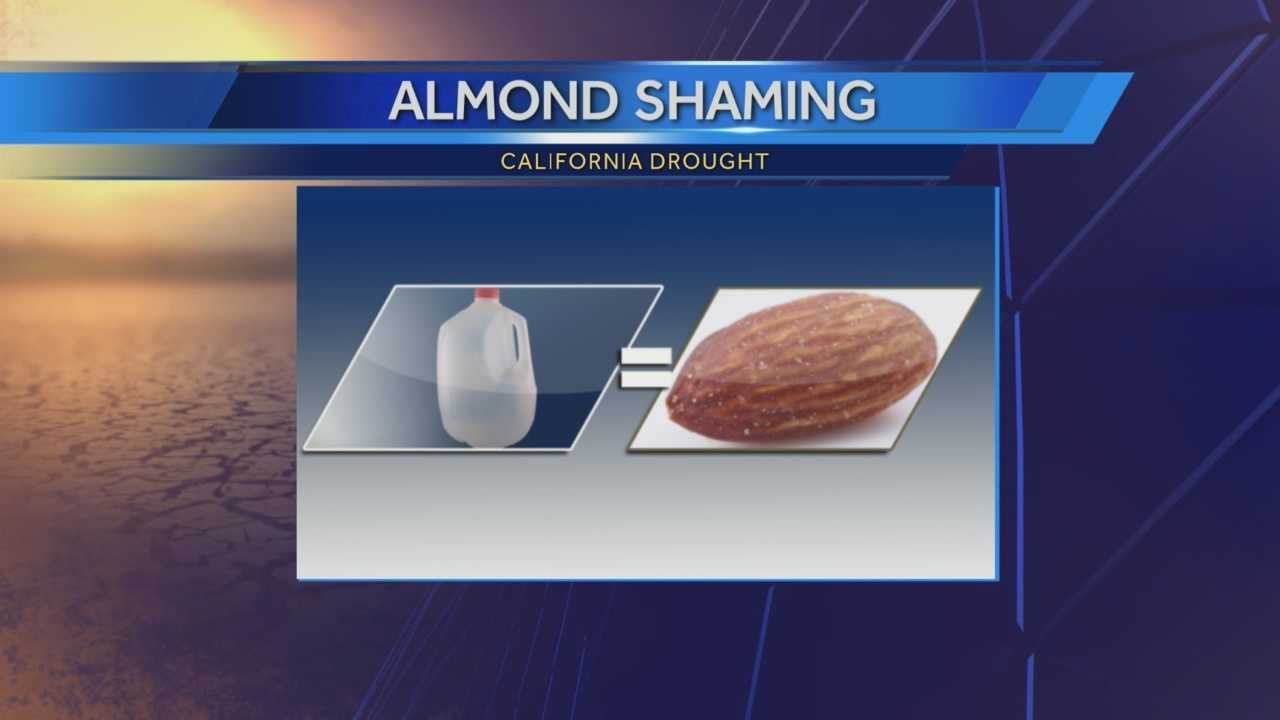 Almond farmers are being shamed after a new report shows it takes one gallon of water to produce one almond.