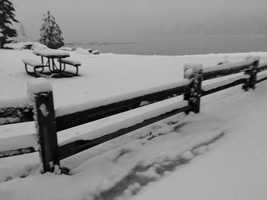 Snow in Pinecrest