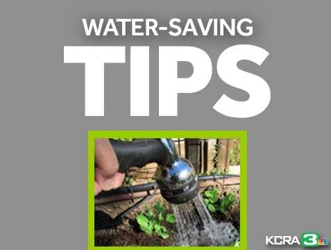 Are you doing your best to conserve water? Here are some easy-to-follow tips for saving water in your own backyard.