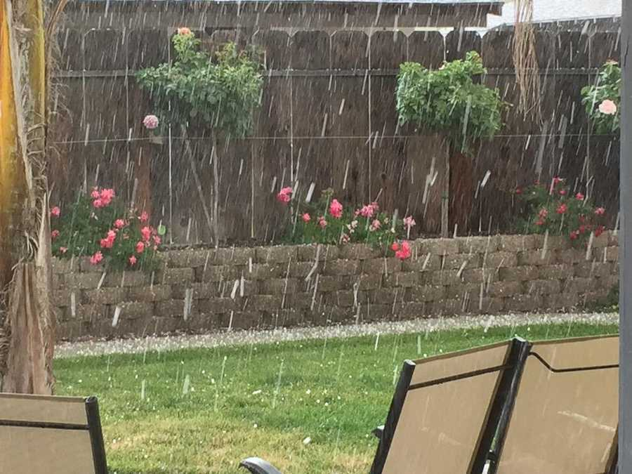 Chunks of hail falling in a backyard in Ceres. (May 7, 2015)