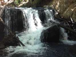 Taken on the Sierra Discovery Trail off Highway 20 near Spaulding Lake, the Bear River Waterfall trail offers a great loop hike, bathrooms, a nice picnic area and it's wheelchair accessible.
