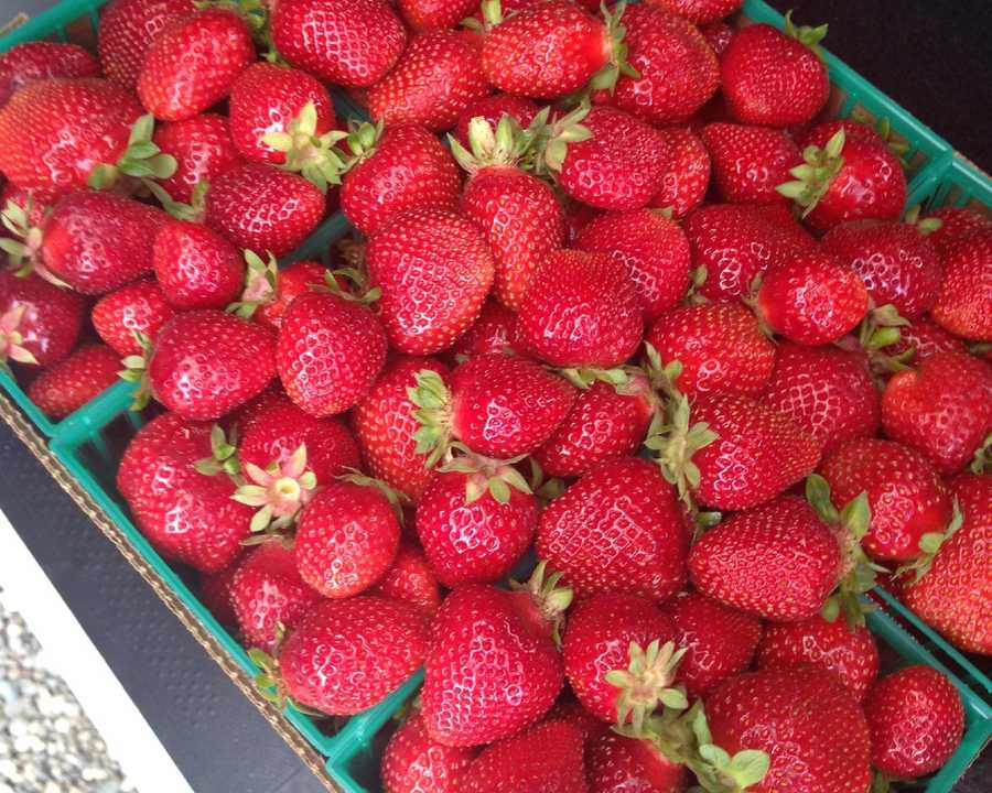 17. Stopping by a fruit stand to pick up some fresh, locally grown produce, like juicy strawberries.