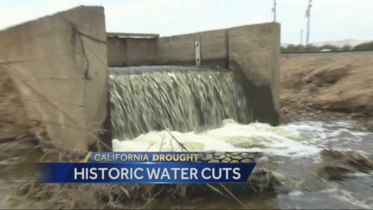 As historic water cuts continue to be put in place, some California farmers are worried they may have to leave their fields fallow.