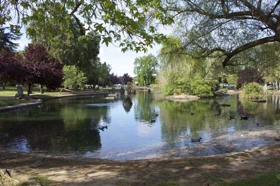 Enjoy a picnic: Grab some sandwiches, snacks and juice boxes and take your picnic blanket to a neighborhood park or a green spot in a neighboring town. Popular spots in Sacramento include McKinley Park and William Land Park, where there's plenty of shade and lots of grass for the kids to run around.