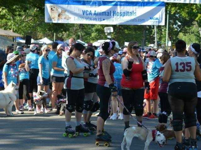 What: Doggy DashWhere: William Land ParkWhen: Sat 9amClick here for more information on this event.