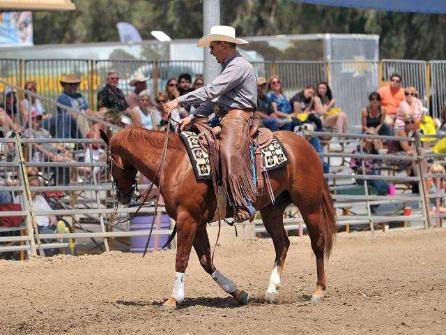 What: Western States Horse ExpoWhere: Cal ExpoWhen: Fri-Sun 9am-6pmClick here for more information on this event.