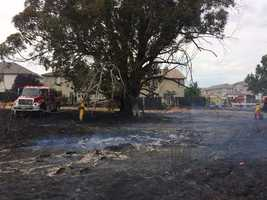 A fast-moving, wind-whipped grass fire in Elk Grove has been contained, according to the Cosumnes Fire Department.