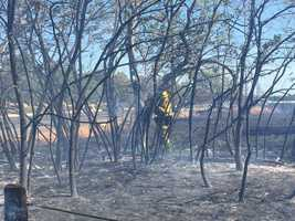 Sacramento Metro firefighters battled a small grass fire that burned near Bradshaw Road in Sacramento County. (June 18, 2015)